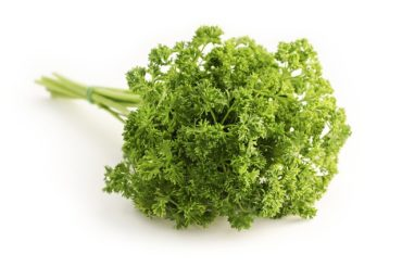A bunch of fresh parsley